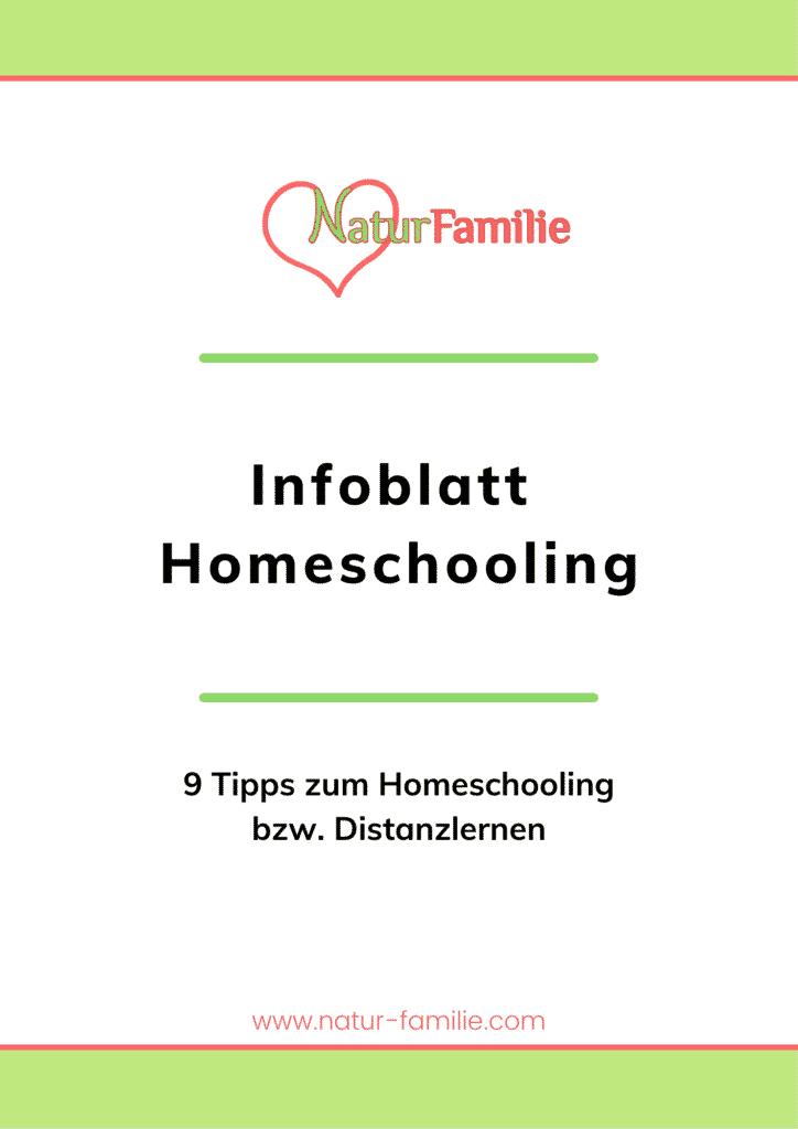 Infoblatt Homeschooling